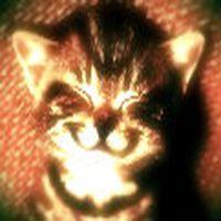her akşam çöp atmaya gidince, çöp kutusunun içinden aniden fırlayan şizofren kedi, seni seviyoruz.