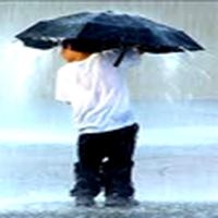 kışa girerken ben: hoşça kal karpuz, dondurma, güneş. hoş geldin ıhlamur, şemsiye, mendil kutusu. sana da selam doğal gaz faturası.