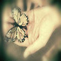 Olum kelebek! 1 g�nl�k �mr�n v...
