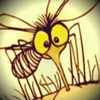 Neden bizim ev sivrisin...