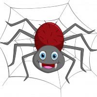 Gavurun örümceği normal...